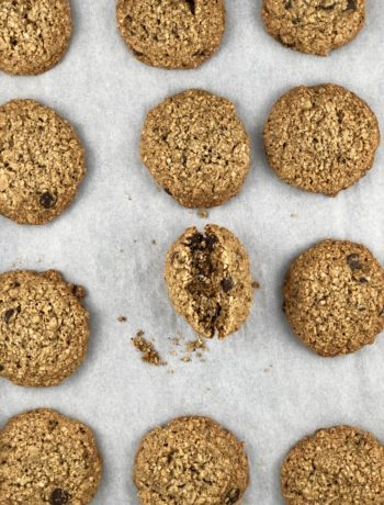 FODMAP safe cookies - Gluten-free lactation oatmeal chocolate chip cookies